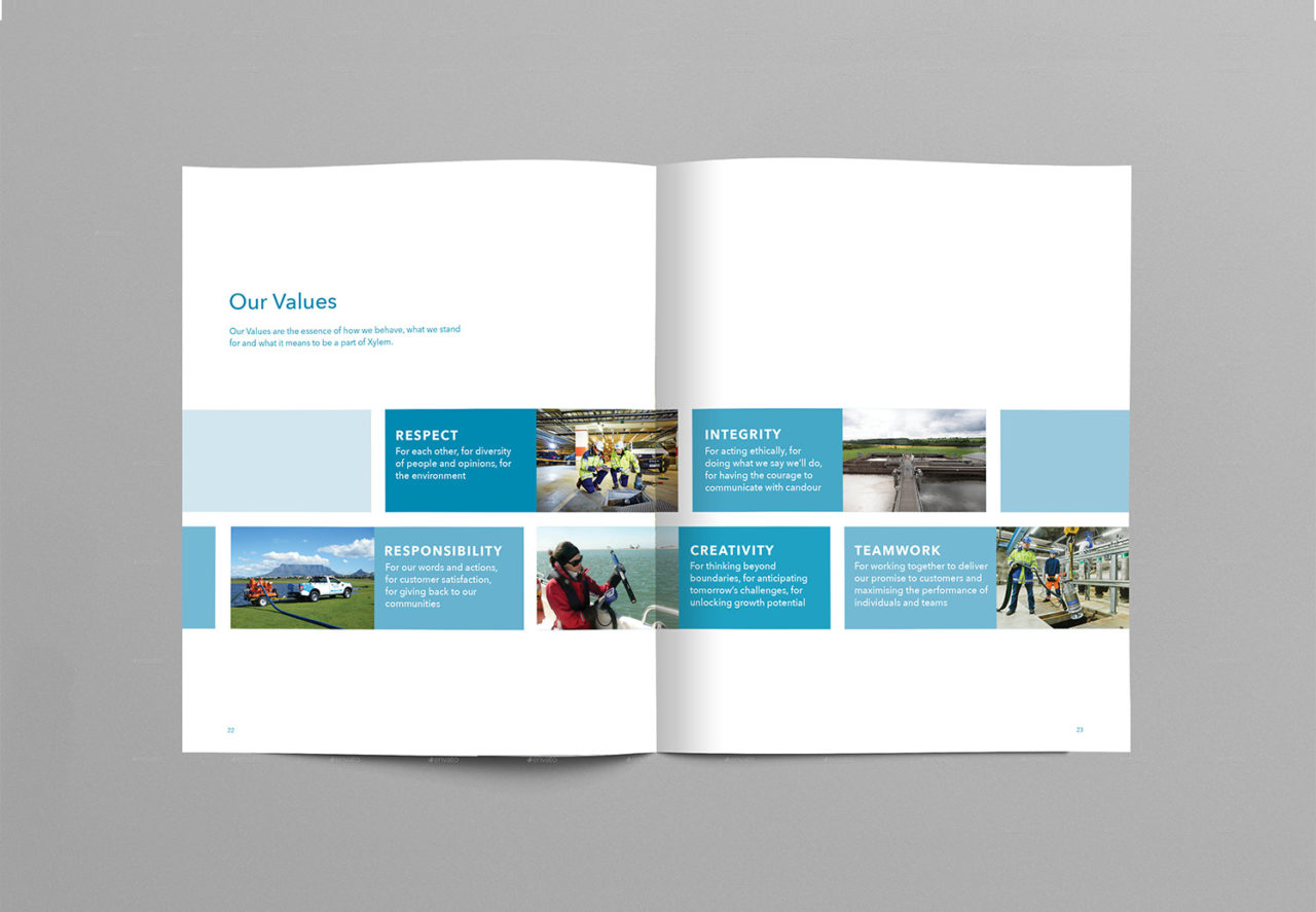 Portfolio of Corporate Edge's work with Xylem to capture their culture