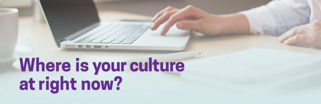 Where is your culture at right now? Click here for our 5 minute culture survey.